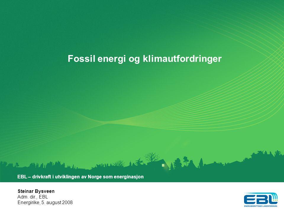 Steinar Bysveen Adm.dir., EBL Energirike, 5.