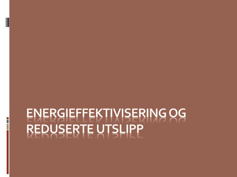 Energieffektivisering og reduserte utslipp Kildesortering Wake up call - Thermofotografering Incitamenter - Innbytteordning på vedovner - Elektriske sensorer CO2 reduksjon - Gassferje - Bilpark, - Fri overfart med el- biler