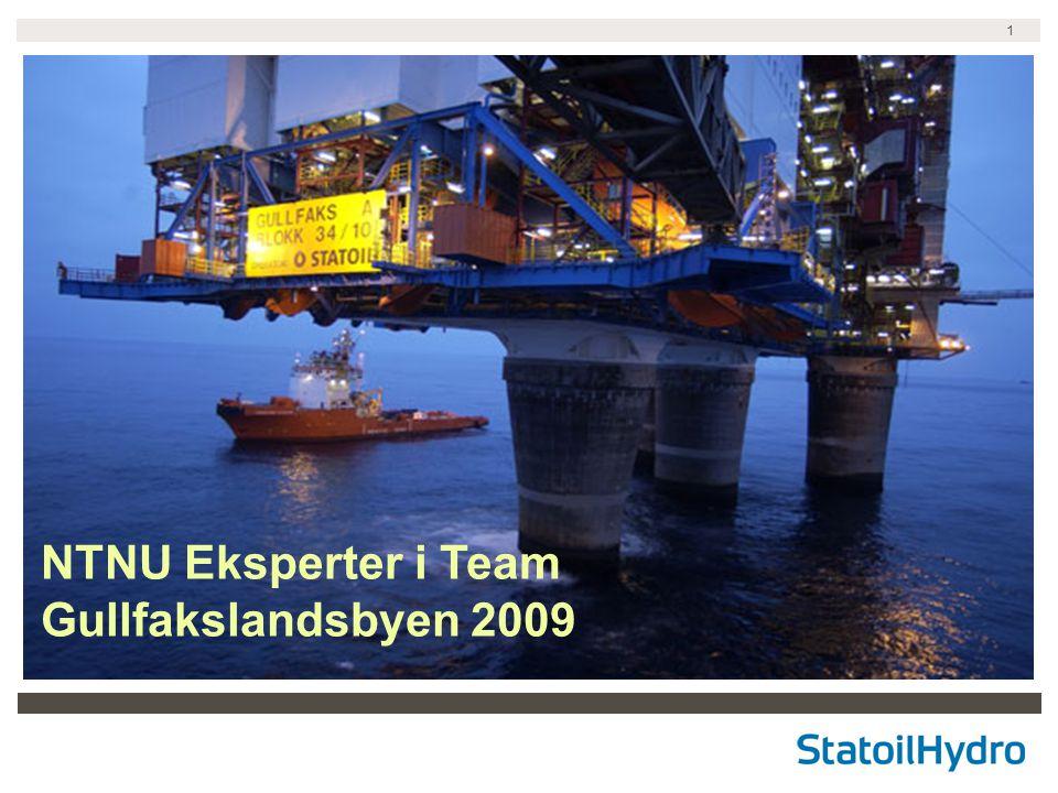 1 NTNU Eksperter i Team Gullfakslandsbyen 2009