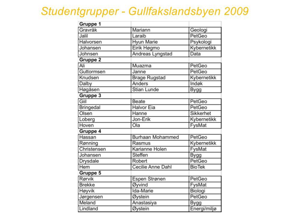 Studentgrupper - Gullfakslandsbyen 2009