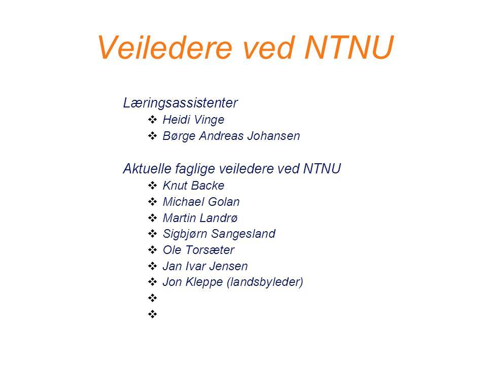 Veiledere ved NTNU Læringsassistenter  Heidi Vinge  Børge Andreas Johansen Aktuelle faglige veiledere ved NTNU  Knut Backe  Michael Golan  Martin