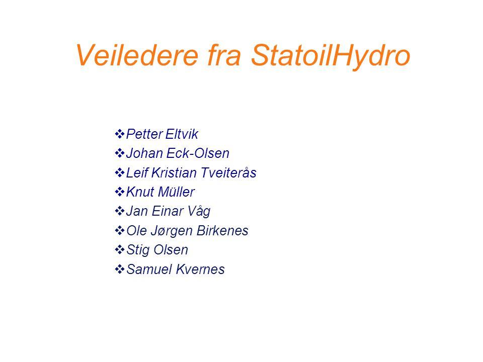 Veiledere fra StatoilHydro  Petter Eltvik  Johan Eck-Olsen  Leif Kristian Tveiterås  Knut Müller  Jan Einar Våg  Ole Jørgen Birkenes  Stig Olse