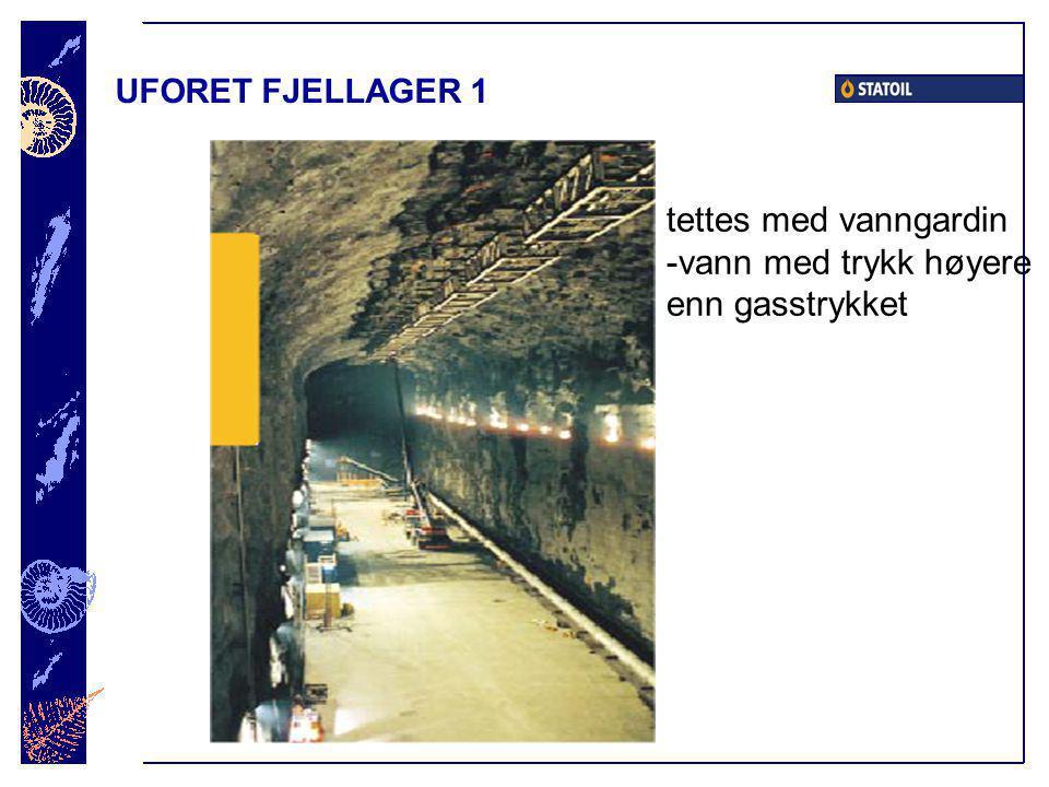 UFORET FJELLAGER 1 tettes med vanngardin -vann med trykk høyere enn gasstrykket