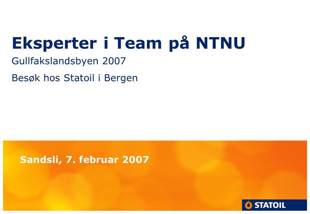 Eksperter i Team på NTNU Gullfakslandsbyen 2007 Besøk hos Statoil i Bergen Sandsli, 7. februar 2007