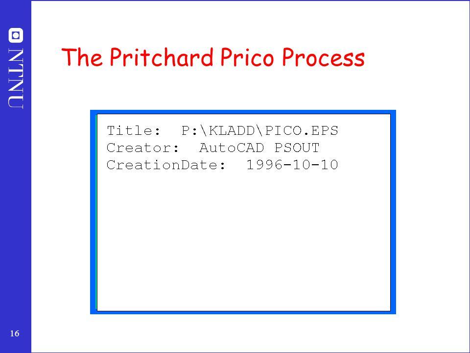 16 The Pritchard Prico Process