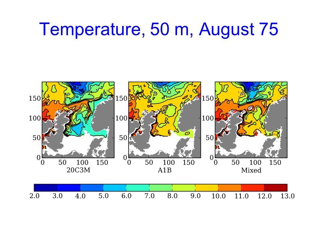 Temperature, 50 m, August 75