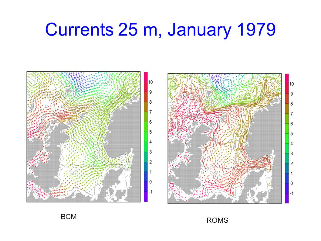 Currents 25 m, January 1979 BCM ROMS