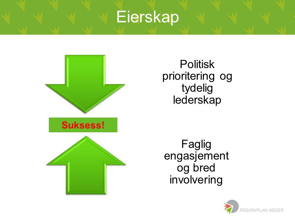 Eierskap Politisk prioritering og tydelig lederskap Faglig engasjement og bred involvering Suksess!