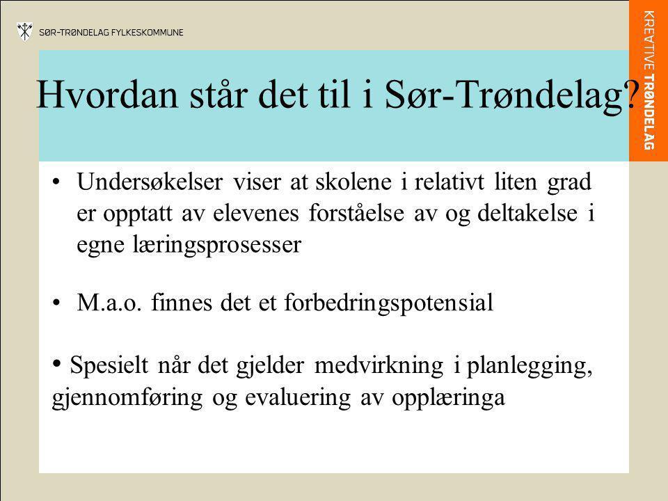 Hvordan står det til i Sør-Trøndelag? M.a.o. finnes det et forbedringspotensial Undersøkelser viser at skolene i relativt liten grad er opptatt av ele