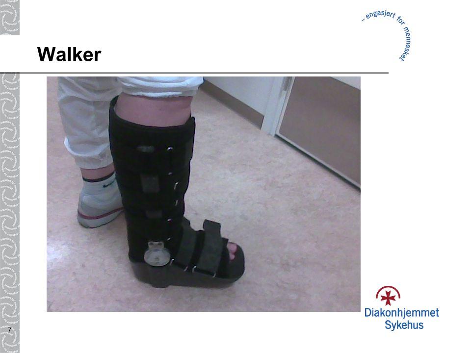 7 Walker