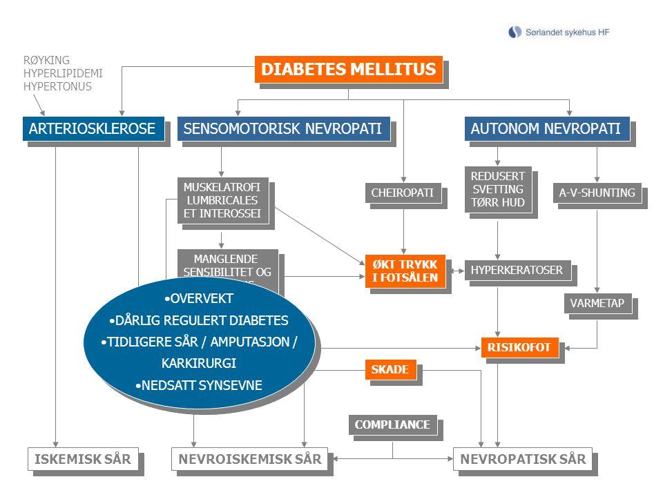 MÅL Amputasjonsprofylakse Når amputasjonen ikke kan forhindres, må mest mulig mobilitet for pasienten være målet Identifikasjon av risikopasienter
