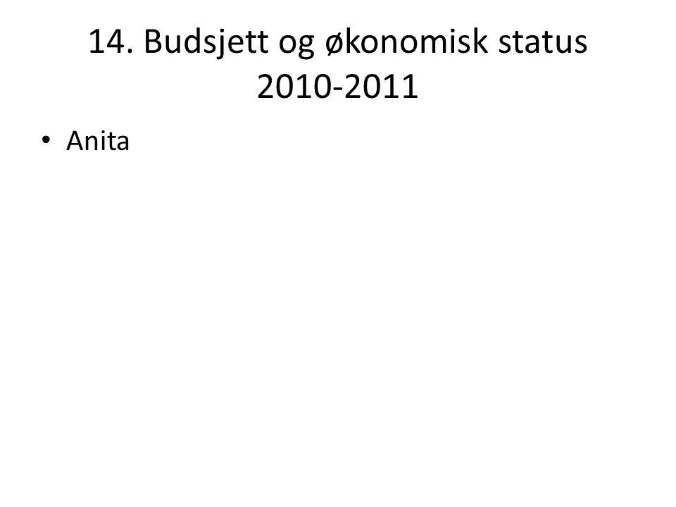 14. Budsjett og økonomisk status 2010-2011 Anita