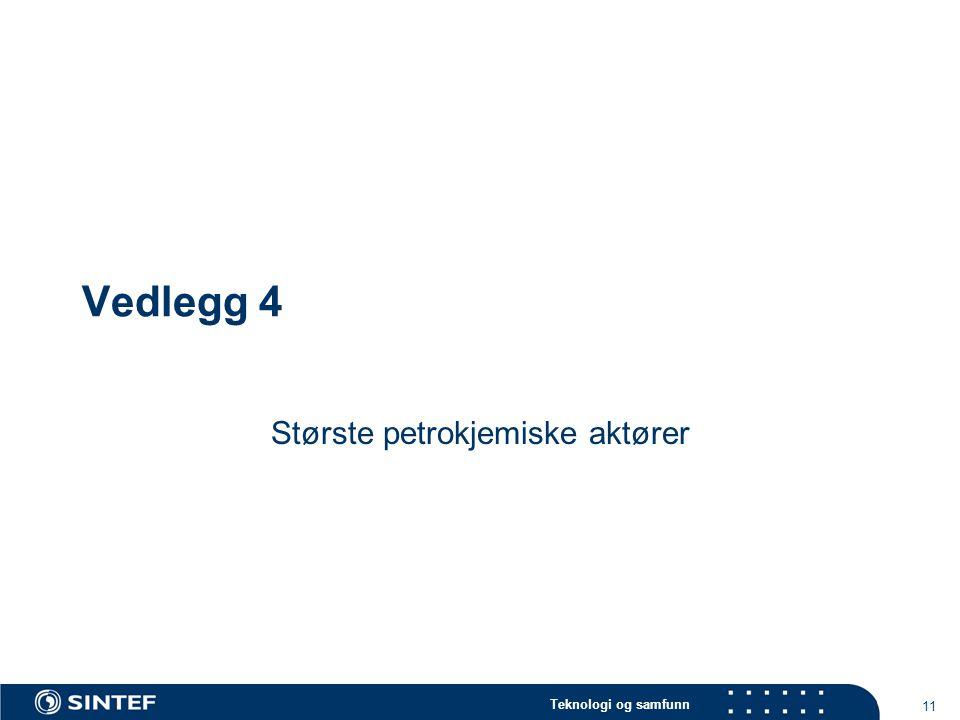 Teknologi og samfunn 11 Vedlegg 4 Største petrokjemiske aktører