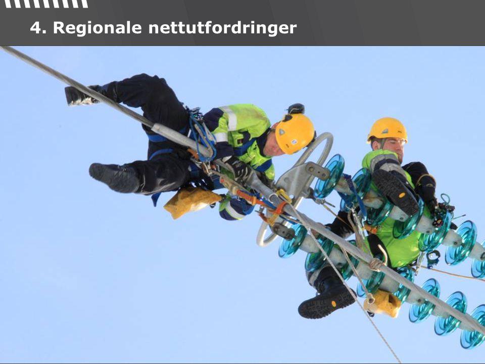 4. Regionale nettutfordringer