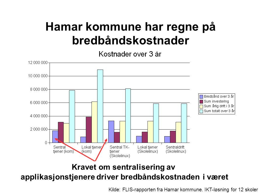 Kilde: FLIS-rapporten fra Hamar kommune.
