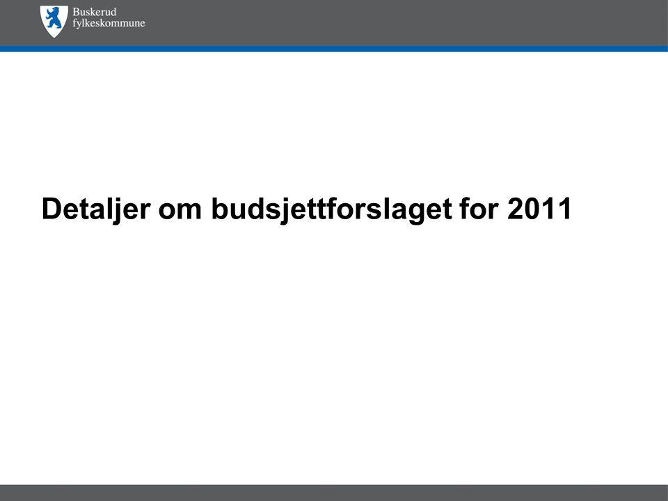 Detaljer om budsjettforslaget for 2011