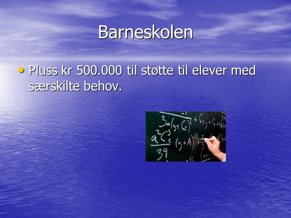 Barneskolen Pluss kr 500.000 til støtte til elever med særskilte behov. Pluss kr 500.000 til støtte til elever med særskilte behov.