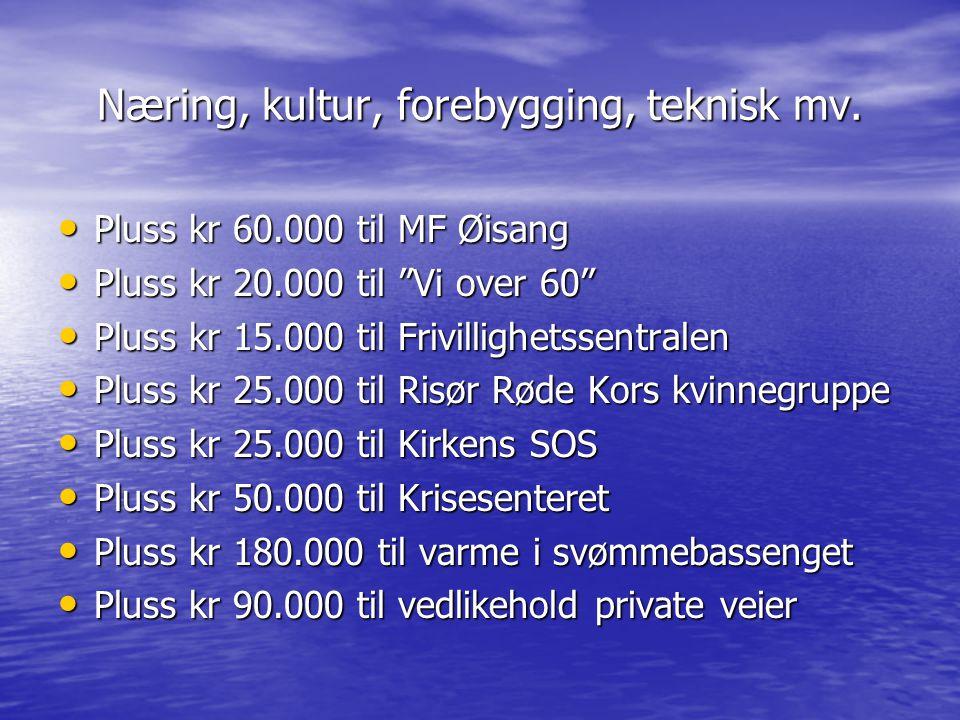 """Næring, kultur, forebygging, teknisk mv. Pluss kr 60.000 til MF Øisang Pluss kr 60.000 til MF Øisang Pluss kr 20.000 til """"Vi over 60"""" Pluss kr 20.000"""