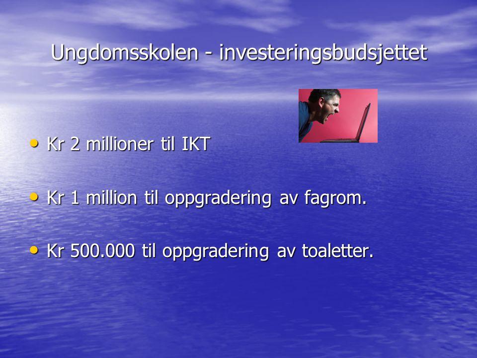 Ungdomsskolen - investeringsbudsjettet Kr 2 millioner til IKT Kr 2 millioner til IKT Kr 1 million til oppgradering av fagrom. Kr 1 million til oppgrad