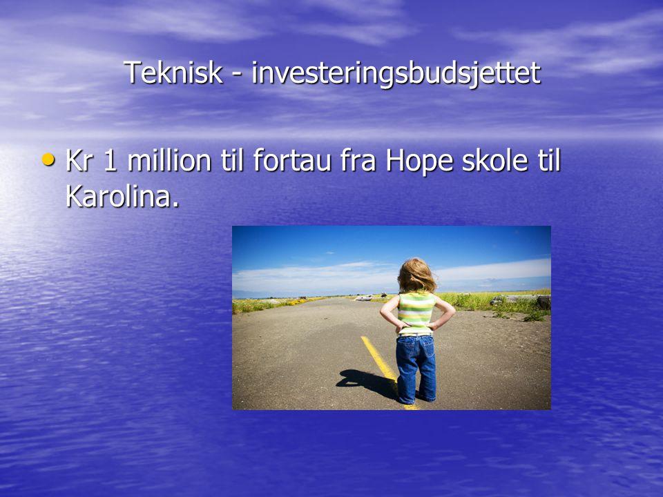 Teknisk - investeringsbudsjettet Kr 1 million til fortau fra Hope skole til Karolina. Kr 1 million til fortau fra Hope skole til Karolina.