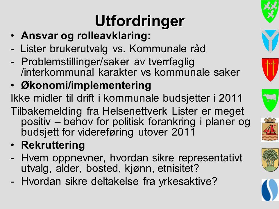 Utfordringer Ansvar og rolleavklaring: - Lister brukerutvalg vs. Kommunale råd -Problemstillinger/saker av tverrfaglig /interkommunal karakter vs komm