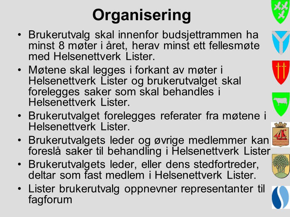 Organisering Brukerutvalg skal innenfor budsjettrammen ha minst 8 møter i året, herav minst ett fellesmøte med Helsenettverk Lister. Møtene skal legge