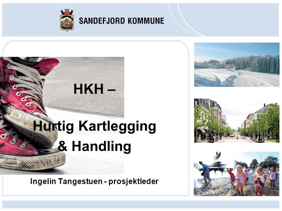 Gi et innblikk i HKH Sandefjords erfaringer