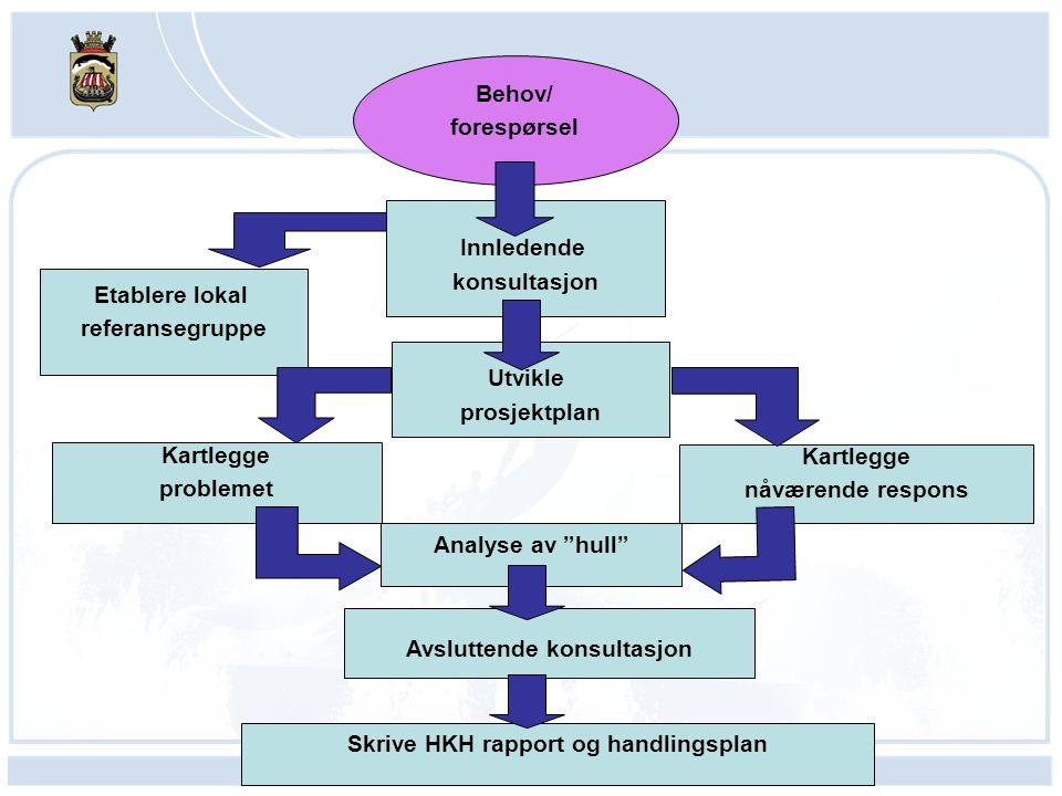 Sentrale spørsmål i analysen Hva sier funnene om hvert problem/problemområde som er kartlagt.