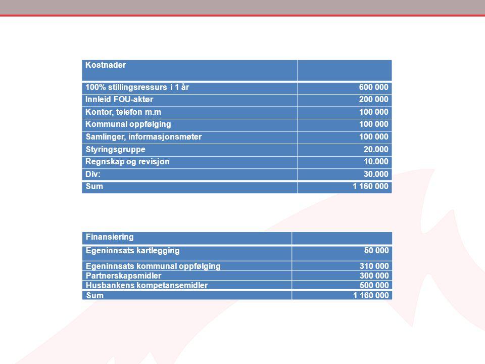 Kostnader 100% stillingsressurs i 1 år600 000 Innleid FOU-aktør200 000 Kontor, telefon m.m100 000 Kommunal oppfølging100 000 Samlinger, informasjonsmø