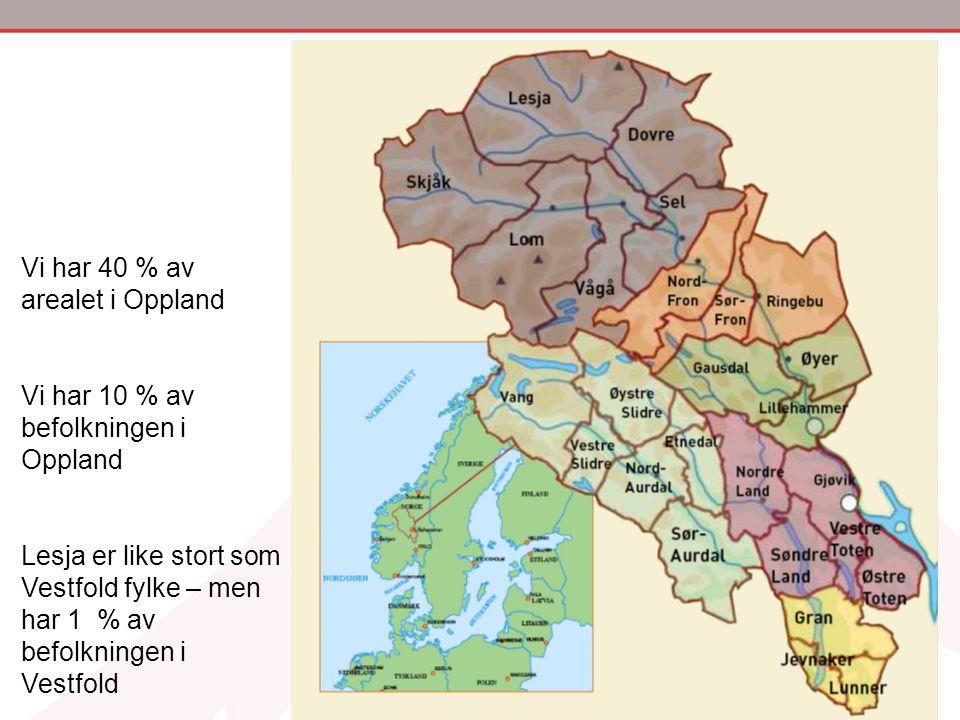 Vi har 40 % av arealet i Oppland Vi har 10 % av befolkningen i Oppland Lesja er like stort som Vestfold fylke – men har 1 % av befolkningen i Vestfold