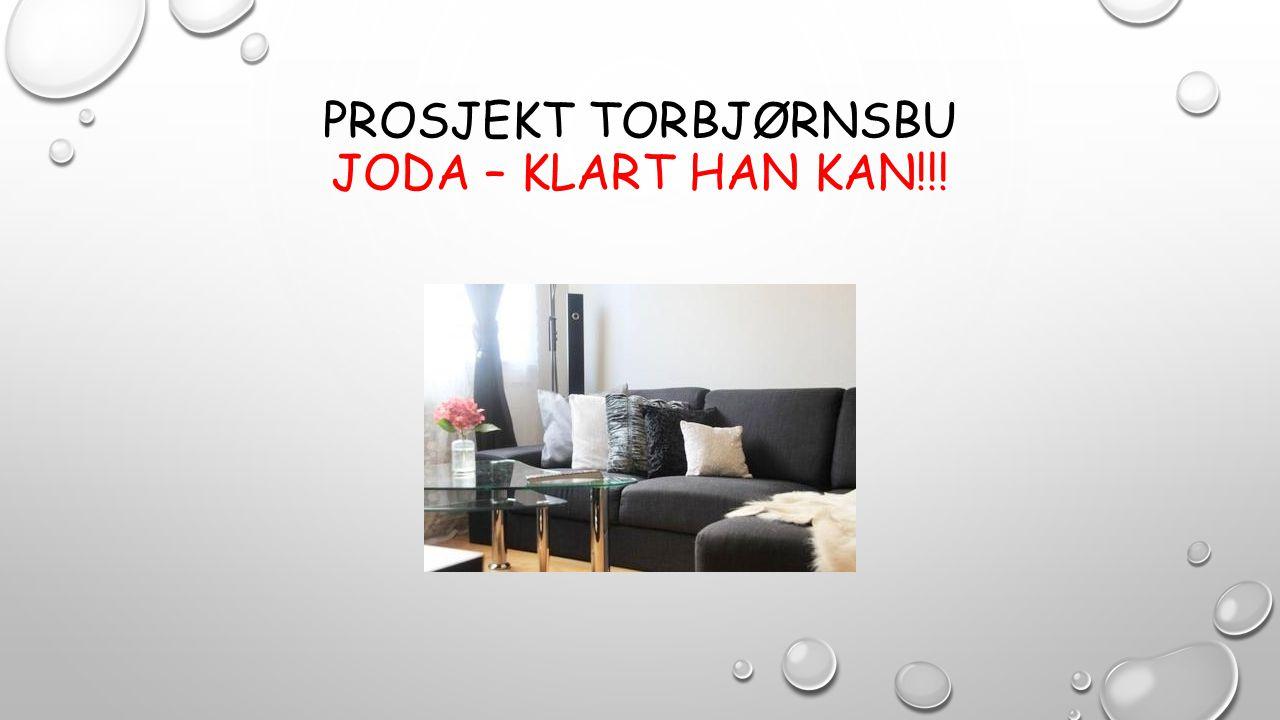 PROSJEKT TORBJØRNSBU JODA – KLART HAN KAN!!!