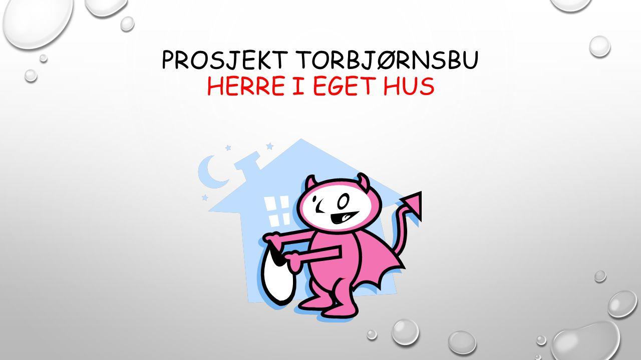 PROSJEKT TORBJØRNSBU HERRE I EGET HUS
