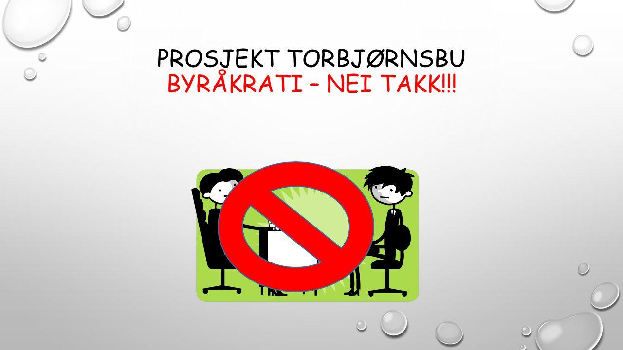 PROSJEKT TORBJØRNSBU BYRÅKRATI – NEI TAKK!!!