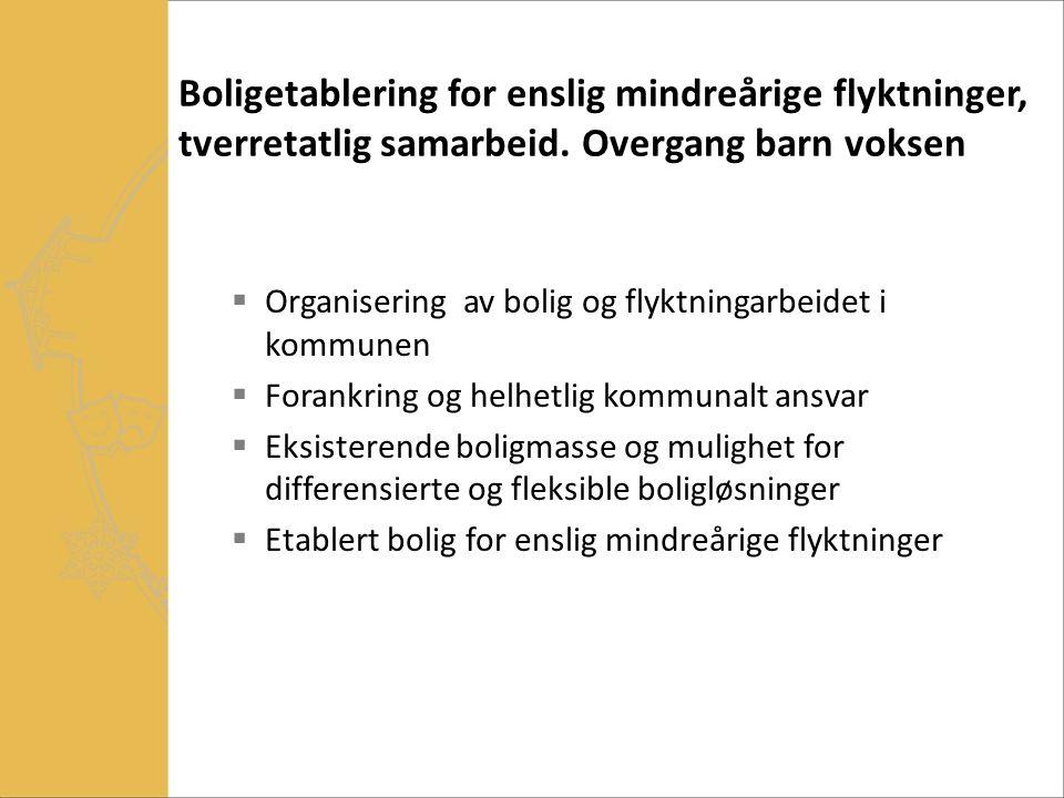 Innflytting, bomiljø  Beboermøte-> 1 x pr 4-6 uke i starten  Beboerorganisering  Husordensregler ( kommunale) – ønsker de tilleggsregler.