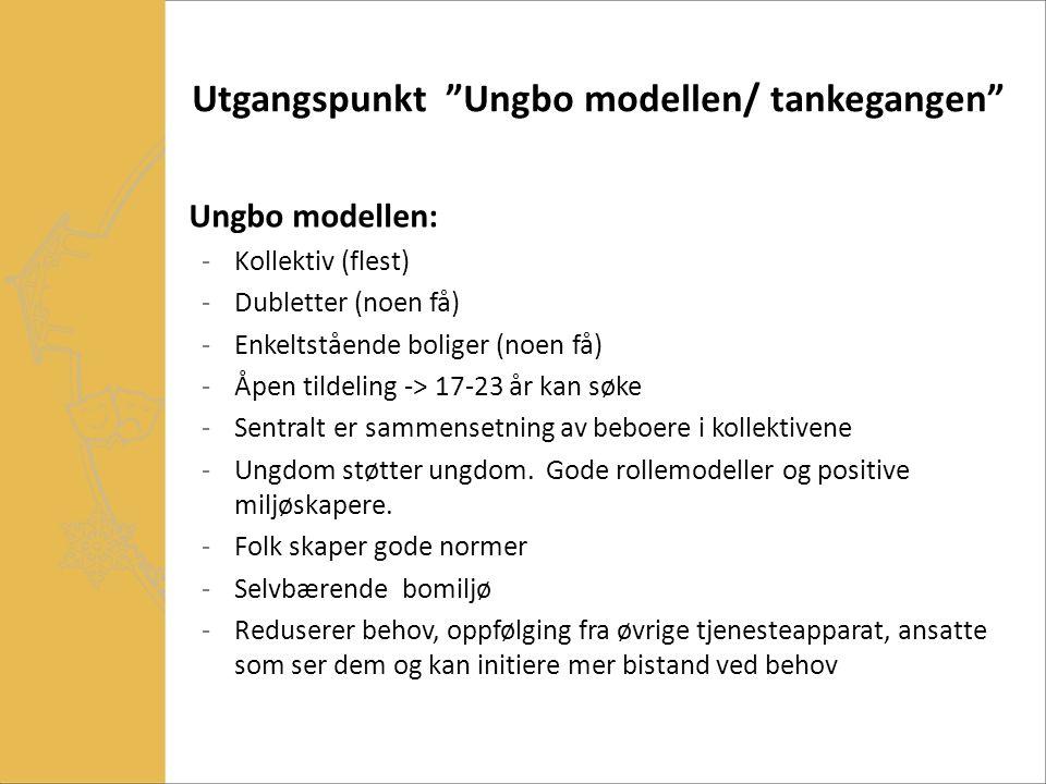 """Utgangspunkt """"Ungbo modellen/ tankegangen"""" Ungbo modellen: -Kollektiv (flest) -Dubletter (noen få) -Enkeltstående boliger (noen få) -Åpen tildeling ->"""