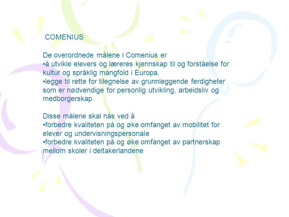 De overordnede målene i Comenius er å utvikle elevers og læreres kjennskap til og forståelse for kultur og språklig mangfold i Europa.