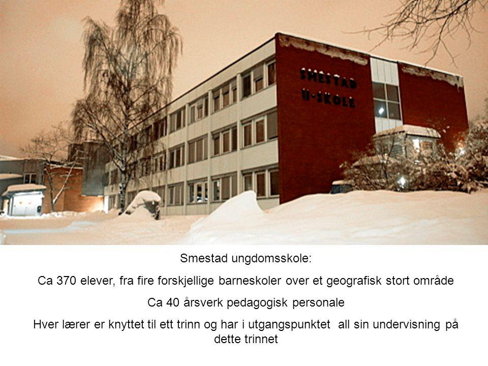 Linjeledelse Smestad ungdomsskole Rektor Inspektør Tospråklige lærere Vikarer-enkeltvedtak Trinnleder 8.