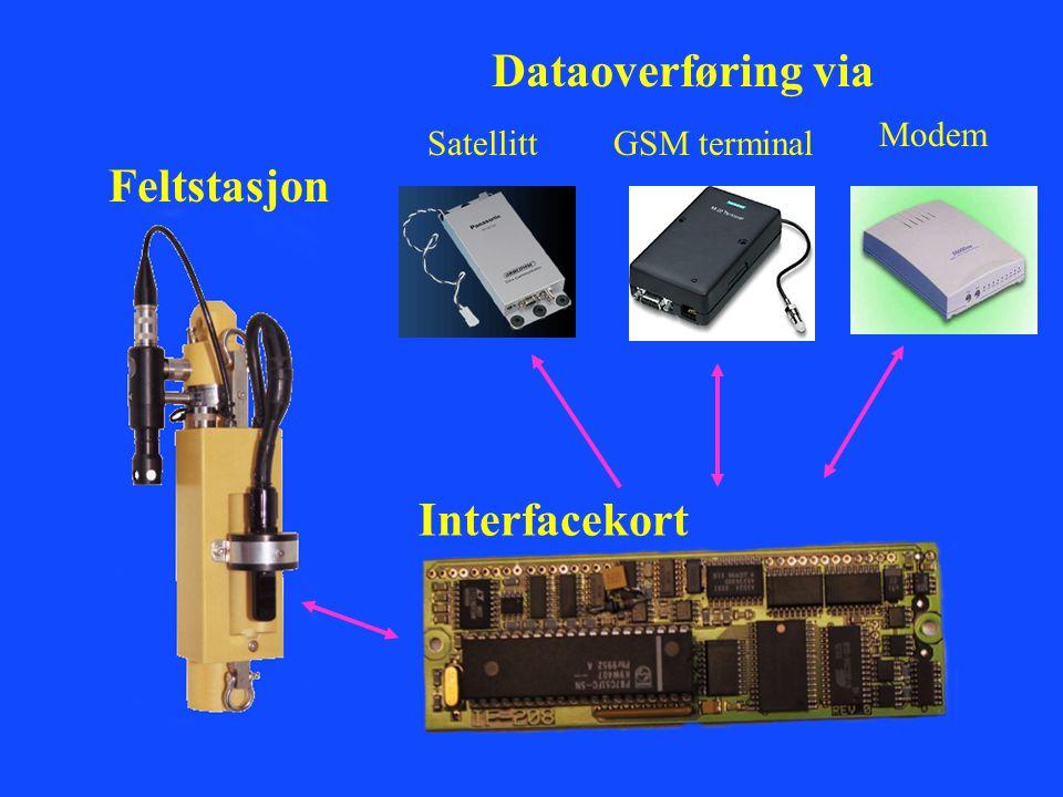 Feltstasjon Interfacekort SatellittGSM terminal Modem Dataoverføring via