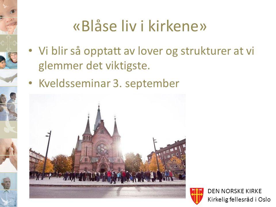 DEN NORSKE KIRKE Kirkelig fellesråd i Oslo «Blåse liv i kirkene» Vi blir så opptatt av lover og strukturer at vi glemmer det viktigste. Kveldsseminar