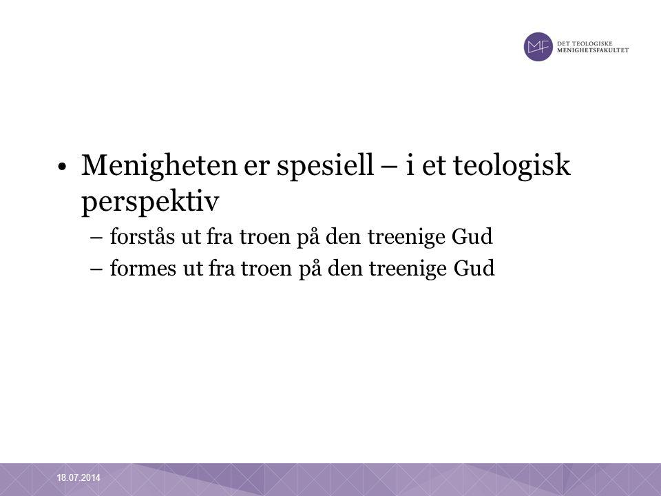 Menigheten er spesiell – i et teologisk perspektiv –forstås ut fra troen på den treenige Gud –formes ut fra troen på den treenige Gud 18.07.2014