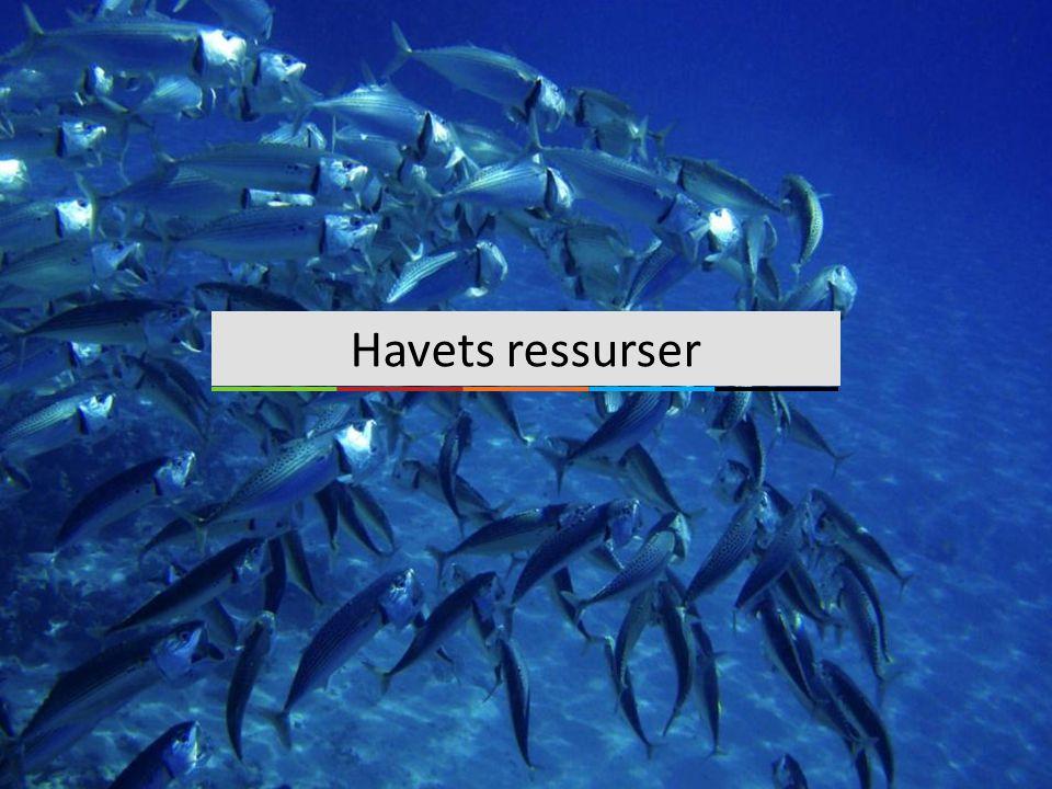 Havets ressurser