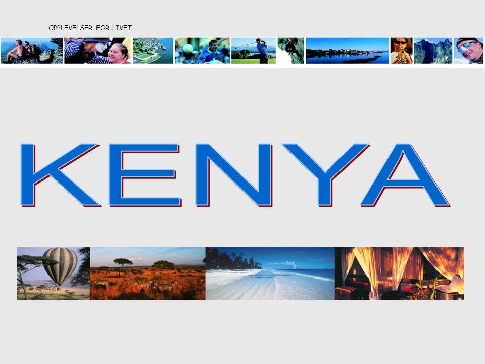 Bli med på en uforglemmelig opplevelse til Kenya og Basecamp Masai Mara.
