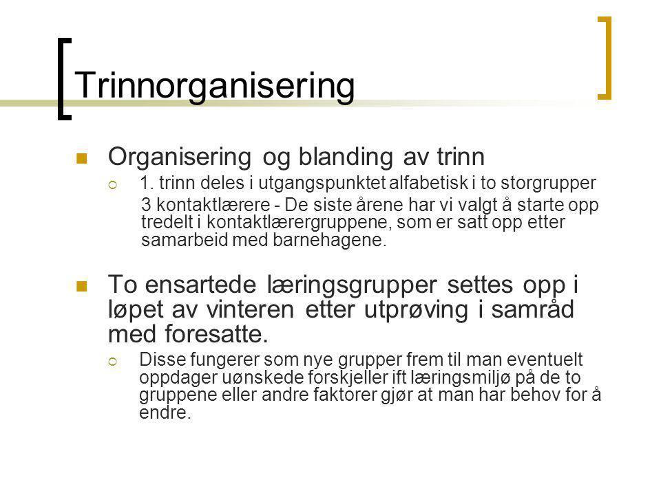 Trinnorganisering Organisering og blanding av trinn  1. trinn deles i utgangspunktet alfabetisk i to storgrupper 3 kontaktlærere - De siste årene har