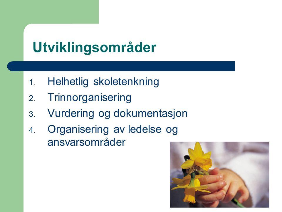 Utviklingsområder 1. Helhetlig skoletenkning 2. Trinnorganisering 3.