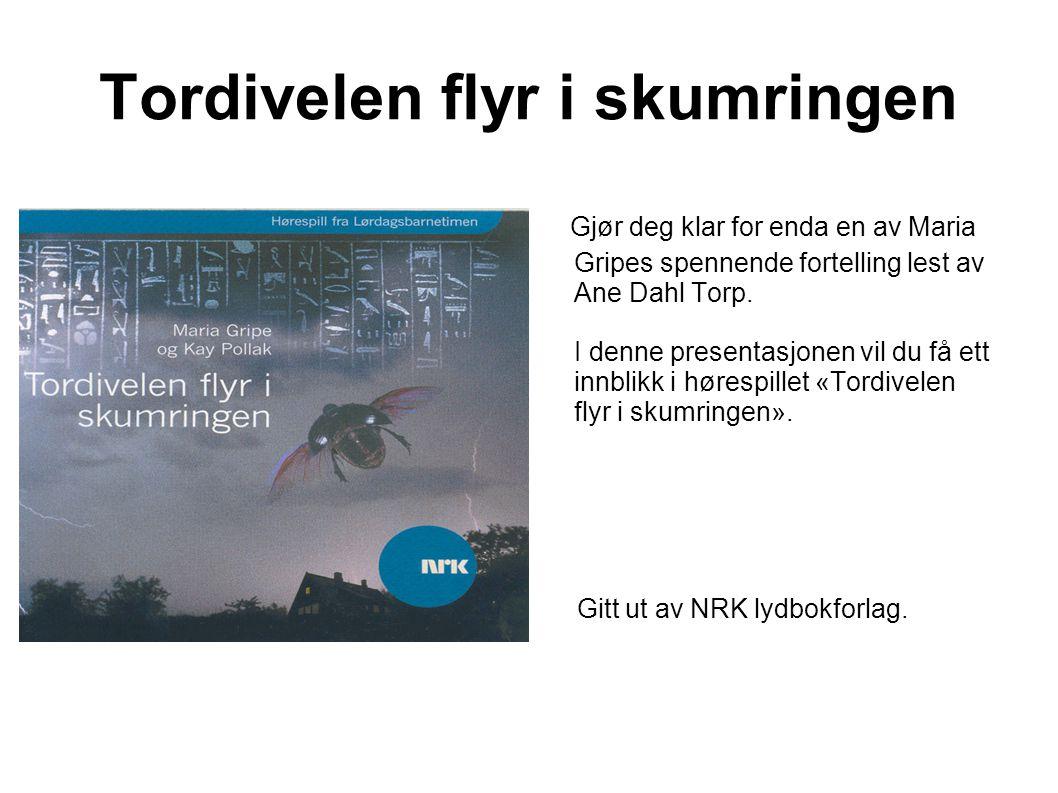 Tordivelen flyr i skumringen Forfatter: Maria Gripe Gitt ut av: NRK lydbokforlag Gitt ut: 1979/2002 I denne virkelighetstro fortellingen som foregår i Ringaryd i Sverige, får vi høre om den spennende hverdagen til tre ungdommer.