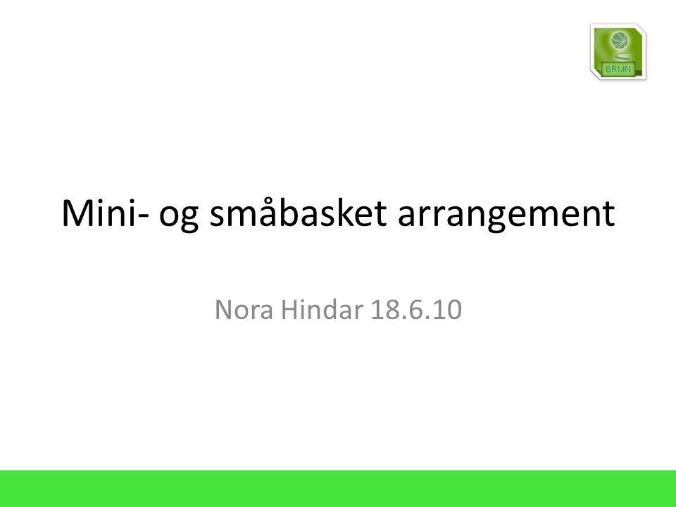 Mini- og småbasket arrangement Nora Hindar 18.6.10
