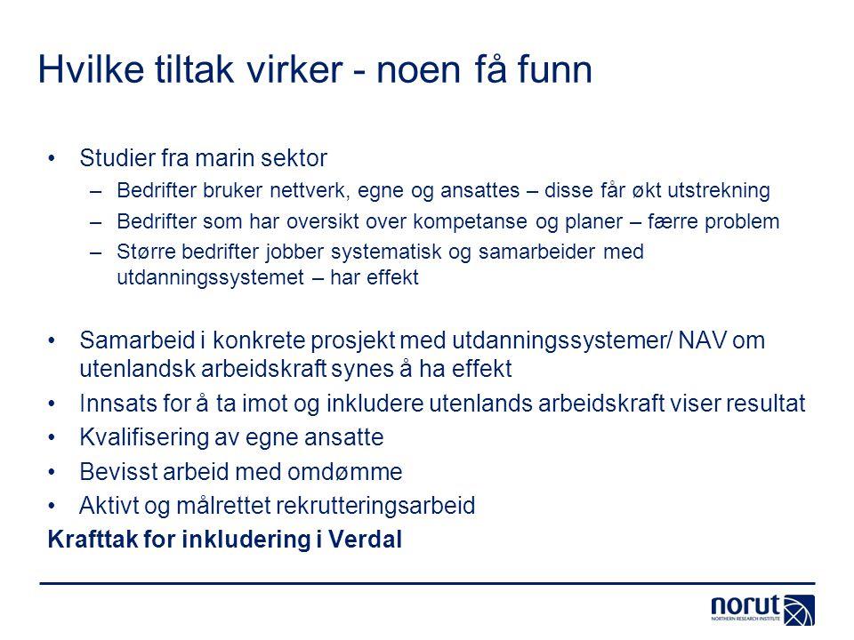 Hvilke tiltak virker - noen få funn Studier fra marin sektor –Bedrifter bruker nettverk, egne og ansattes – disse får økt utstrekning –Bedrifter som h