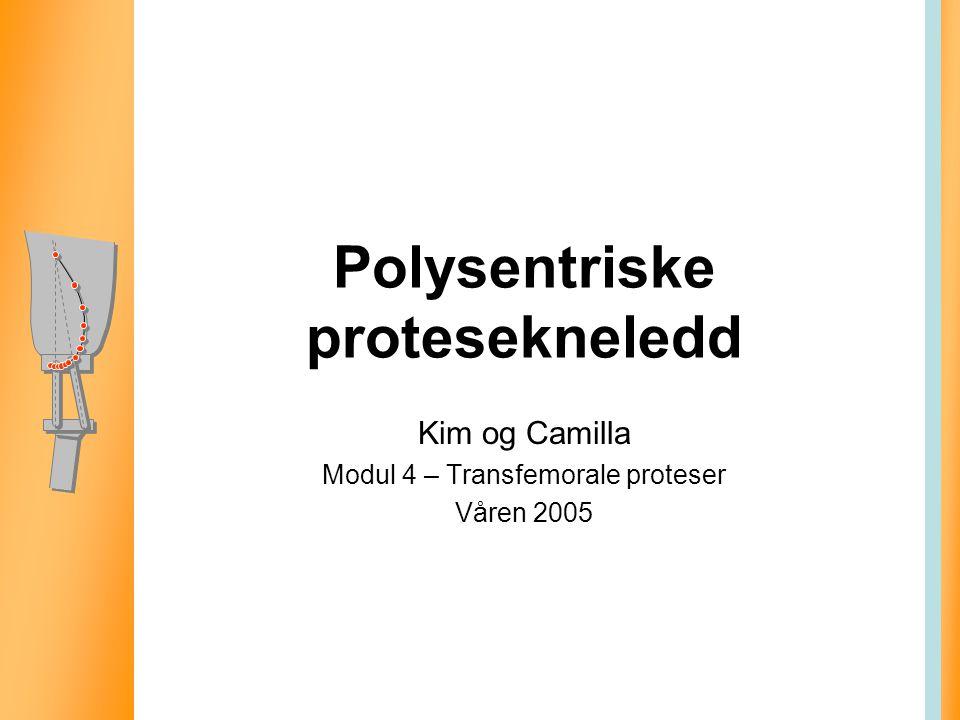 Polysentriske protesekneledd Kim og Camilla Modul 4 – Transfemorale proteser Våren 2005