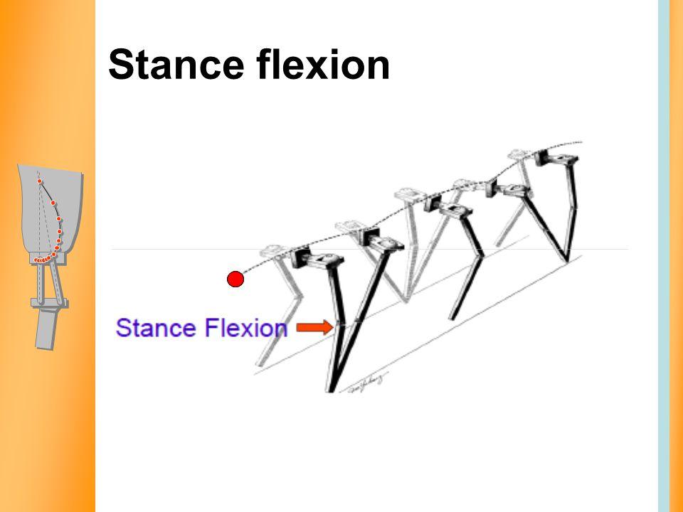 Stance flexion