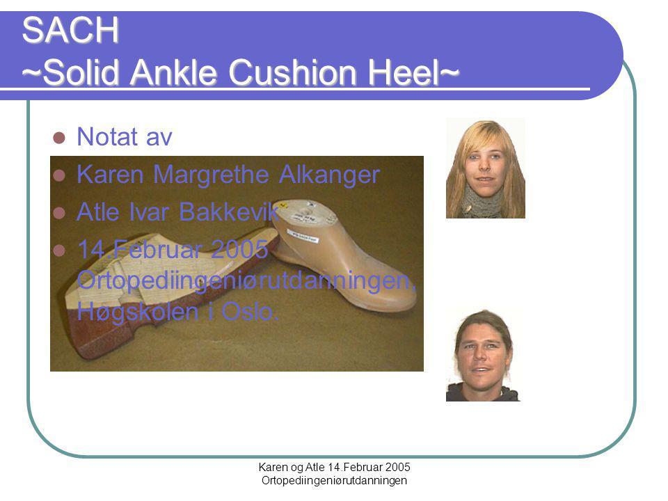 Karen og Atle 14.Februar 2005 Ortopediingeniørutdanningen Brukergrupper Ikke alt for aktive protese pasienter. Brukere som trenger en lett fot med en